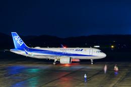 けんじさんが、岡山空港で撮影した全日空 A320-271Nの航空フォト(飛行機 写真・画像)
