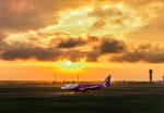 Cygnus00さんが、新千歳空港で撮影したピーチ A320-214の航空フォト(飛行機 写真・画像)