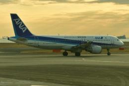 しまb747さんが、羽田空港で撮影した全日空 A320-211の航空フォト(飛行機 写真・画像)