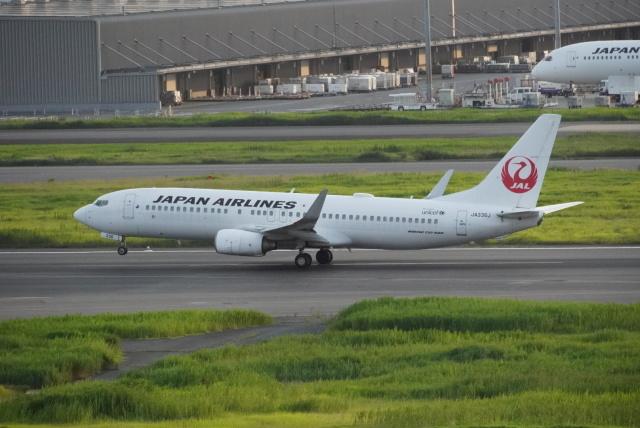 Matyaruさんが、羽田空港で撮影した日本航空 737-846の航空フォト(飛行機 写真・画像)