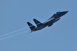 フォト太郎さんが、小松空港で撮影した航空自衛隊 F-15DJ Eagleの航空フォト(飛行機 写真・画像)