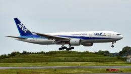 FlyingMonkeyさんが、成田国際空港で撮影した全日空 777-281/ERの航空フォト(飛行機 写真・画像)