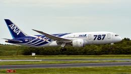 FlyingMonkeyさんが、成田国際空港で撮影した全日空 787-8 Dreamlinerの航空フォト(飛行機 写真・画像)