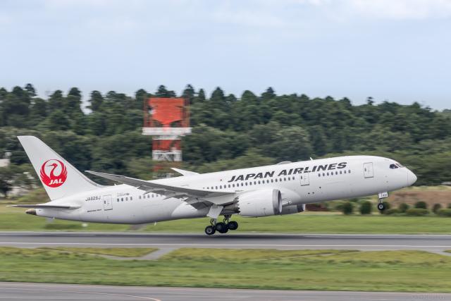 Y-Kenzoさんが、成田国際空港で撮影した日本航空 787-8 Dreamlinerの航空フォト(飛行機 写真・画像)