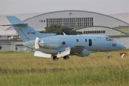DONKEYさんが、新田原基地で撮影した航空自衛隊 U-125A(Hawker 800)の航空フォト(飛行機 写真・画像)