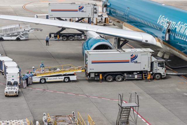 Y-Kenzoさんが、成田国際空港で撮影したベトナム航空 A350-941の航空フォト(飛行機 写真・画像)