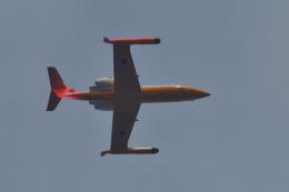 NFファンさんが、厚木飛行場で撮影した海上自衛隊 U-36Aの航空フォト(飛行機 写真・画像)