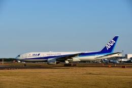 バークレーの犬さんが、宮崎空港で撮影した全日空 777-281/ERの航空フォト(飛行機 写真・画像)