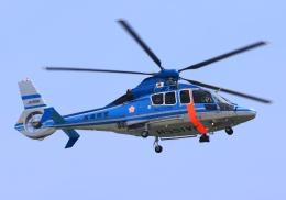 LOTUSさんが、神戸空港で撮影した兵庫県警察 EC155B1の航空フォト(飛行機 写真・画像)