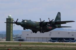 元青森人さんが、松島基地で撮影した航空自衛隊 C-130H Herculesの航空フォト(飛行機 写真・画像)