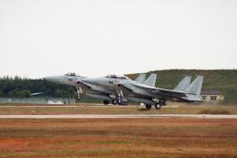 元青森人さんが、松島基地で撮影した航空自衛隊 F-15J Eagleの航空フォト(飛行機 写真・画像)