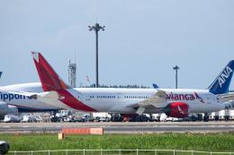 SGR RT 改さんが、成田国際空港で撮影したアビアンカ航空 787-8 Dreamlinerの航空フォト(飛行機 写真・画像)