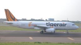 誘喜さんが、台湾桃園国際空港で撮影したタイガーエア台湾 A320-232の航空フォト(飛行機 写真・画像)