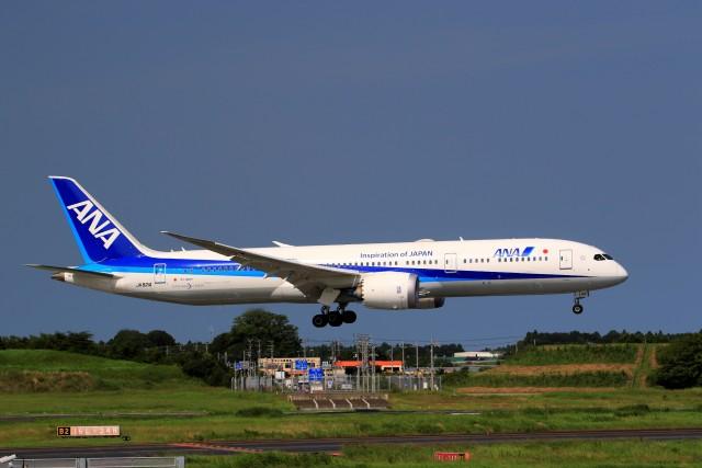 ☆ライダーさんが、成田国際空港で撮影した全日空 787-9の航空フォト(飛行機 写真・画像)