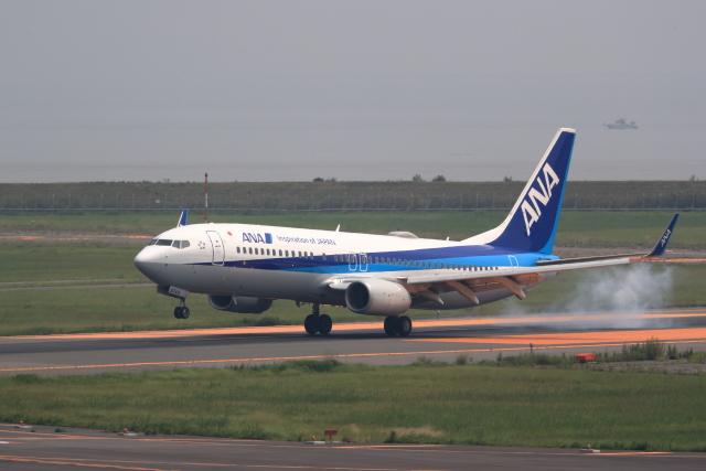 TAKAHIDEさんが、新潟空港で撮影した全日空 737-8ALの航空フォト(飛行機 写真・画像)