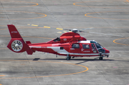 ゆーすきんさんが、名古屋飛行場で撮影した名古屋市消防航空隊 AS365N3 Dauphin 2の航空フォト(飛行機 写真・画像)