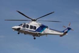 ゆーすきんさんが、名古屋飛行場で撮影したオールニッポンヘリコプター AW139の航空フォト(飛行機 写真・画像)