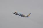 飛行機ゆうちゃんさんが、羽田空港で撮影した全日空 777-381の航空フォト(飛行機 写真・画像)