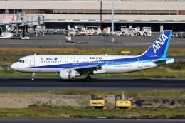 ばっきーさんが、羽田空港で撮影した全日空 A320-211の航空フォト(飛行機 写真・画像)