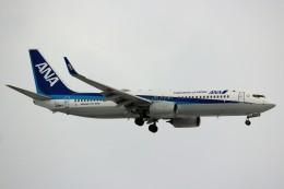 ばっきーさんが、新千歳空港で撮影した全日空 737-8ALの航空フォト(飛行機 写真・画像)