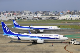 航空フォト:JA54AN 全日空 737-800