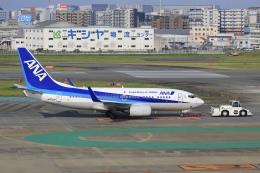 aki241012さんが、福岡空港で撮影した全日空 737-781の航空フォト(飛行機 写真・画像)
