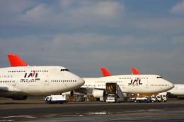 Hiro-hiroさんが、羽田空港で撮影した日本航空 747-446の航空フォト(飛行機 写真・画像)
