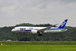 Gambardierさんが、岡山空港で撮影した全日空 787-8 Dreamlinerの航空フォト(飛行機 写真・画像)