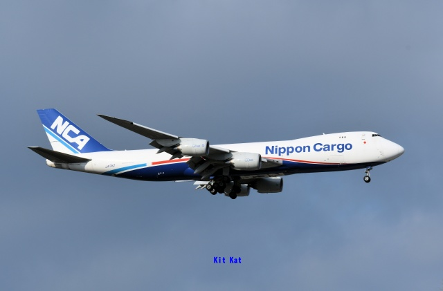 キットカットさんが、成田国際空港で撮影した日本貨物航空 747-8KZF/SCDの航空フォト(飛行機 写真・画像)