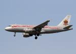 voyagerさんが、バンクーバー国際空港で撮影したエア・カナダ A319-114の航空フォト(飛行機 写真・画像)