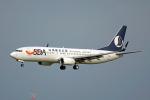 ちゃぽんさんが、成田国際空港で撮影した山東航空 737-85Nの航空フォト(飛行機 写真・画像)
