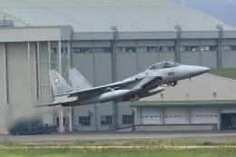なぞたびさんが、名古屋飛行場で撮影した航空自衛隊 F-15DJ Eagleの航空フォト(飛行機 写真・画像)