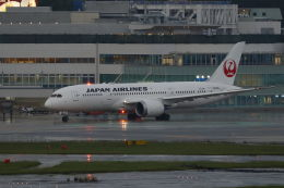 mocohide☆さんが、福岡空港で撮影した日本航空 787-8 Dreamlinerの航空フォト(飛行機 写真・画像)