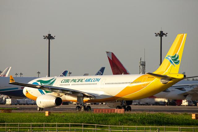 SGR RT 改さんが、成田国際空港で撮影したセブパシフィック航空 A330-343Eの航空フォト(飛行機 写真・画像)