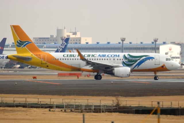 NANASE UNITED®さんが、成田国際空港で撮影したセブパシフィック航空 A320-214の航空フォト(飛行機 写真・画像)