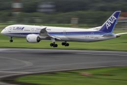 K.Sさんが、成田国際空港で撮影した全日空 787-9の航空フォト(飛行機 写真・画像)
