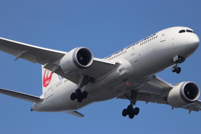 imosaさんが、羽田空港で撮影した日本航空 787-8 Dreamlinerの航空フォト(飛行機 写真・画像)