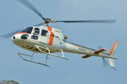 ブルーさんさんが、静岡ヘリポートで撮影した東邦航空 AS350B Ecureuilの航空フォト(飛行機 写真・画像)