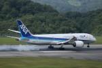 ヒロジーさんが、広島空港で撮影した全日空 787-8 Dreamlinerの航空フォト(飛行機 写真・画像)