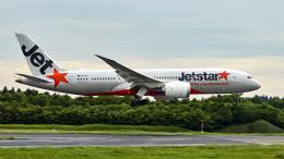 FlyingMonkeyさんが、成田国際空港で撮影したジェットスター 787-8 Dreamlinerの航空フォト(飛行機 写真・画像)