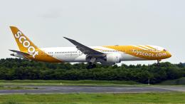 FlyingMonkeyさんが、成田国際空港で撮影したスクート 787-9の航空フォト(飛行機 写真・画像)