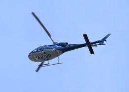 ヘリオスさんが、東京ヘリポートで撮影した三井住友ファイナンス&リース AS355N Ecureuil 2の航空フォト(飛行機 写真・画像)