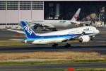 ばっきーさんが、羽田空港で撮影した全日空 787-8 Dreamlinerの航空フォト(飛行機 写真・画像)