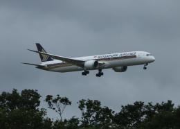 銀苺さんが、成田国際空港で撮影したシンガポール航空 787-10の航空フォト(飛行機 写真・画像)