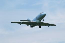 GNPさんが、小松空港で撮影した航空自衛隊 U-125A(Hawker 800)の航空フォト(飛行機 写真・画像)