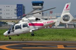 IL-18さんが、東京ヘリポートで撮影した東邦航空 AS365N2 Dauphin 2の航空フォト(飛行機 写真・画像)
