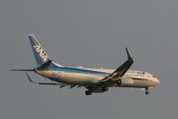 GNPさんが、小松空港で撮影した全日空 737-881の航空フォト(飛行機 写真・画像)