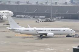 トラッキーさんが、羽田空港で撮影したノードスター航空 737-8K5の航空フォト(飛行機 写真・画像)