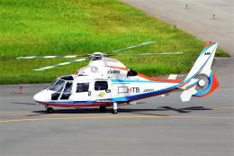 hidetsuguさんが、札幌飛行場で撮影した北海道航空 AS365N2 Dauphin 2の航空フォト(飛行機 写真・画像)