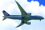 スターアライアンスKMJ まいやんさんが、宮古空港で撮影した全日空 787-8 Dreamlinerの航空フォト(飛行機 写真・画像)
